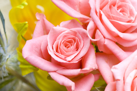 flower_008s.jpg